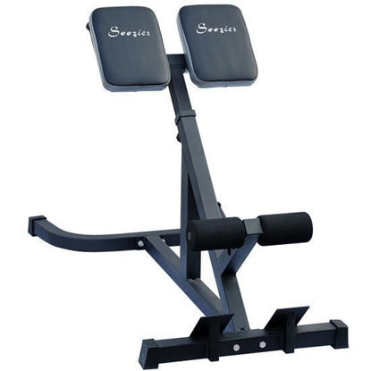Picture of Home Gym Abdominal Machine 45 Degree Hyperextension Roman Chair